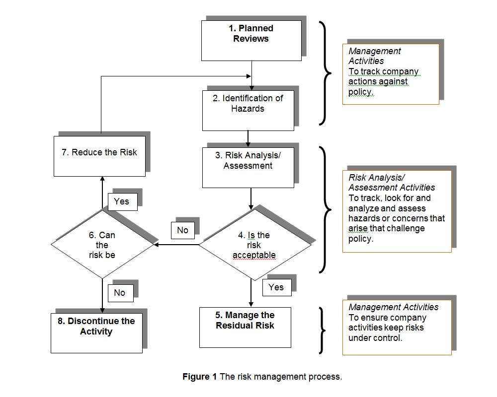 Public Guideline  Risk Management